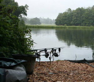 Carp & Pike Fishing
